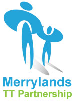 Merrylands Teacher Training Program